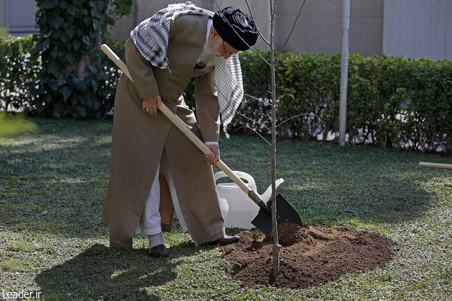 بهمناسبت روز درختکاری و هفته منابع طبیعی، رهبر معظم انقلاب اسلامی دو اصله نهال میوه غرس کردند.
