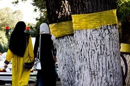 مقررات حفاظت از زنان و کودکان در مناقشات، ضمانت اجرایی ندارد
