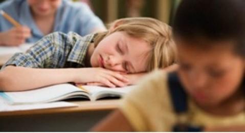 نگاهی به تجربه کشورهای دنیا در حذف مشق شب  فنلاند، آمریکا، ژاپن و ... به کودکان مشق شب میدهند؟